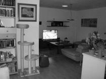 původní stav-rekonstrukce podlahy, stěn, stropu, nábytku+dekorace